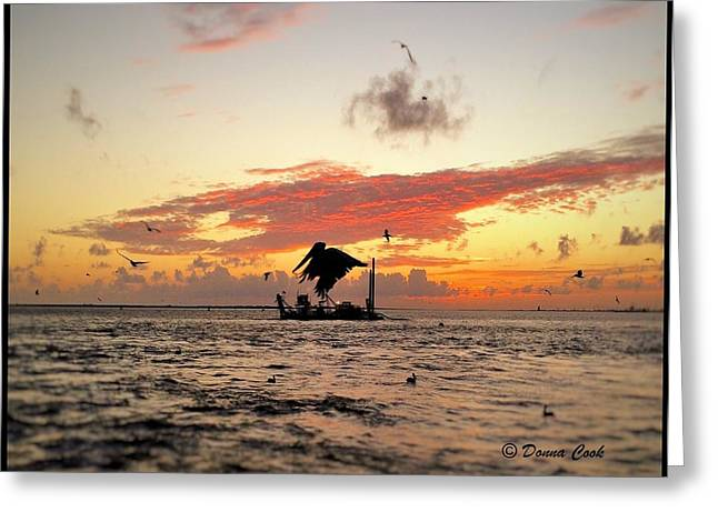 After A Long Life Greeting Cards - Oceanlife at sunset Greeting Card by Donna Cook