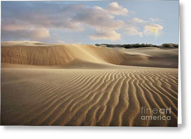 Oceano Greeting Cards - Oceano Dune trails Greeting Card by Sharon Foster