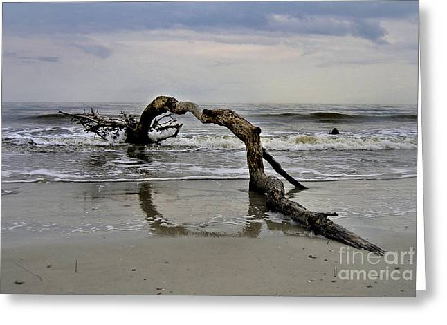 Ocean Photography Greeting Cards - Oceans Arc Greeting Card by Skip Willits