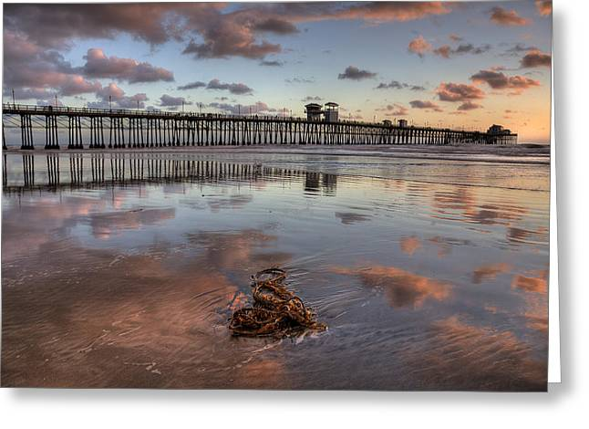 Hdr Landscape Photographs Greeting Cards - Oceanside Pier Seaweed Greeting Card by Peter Tellone