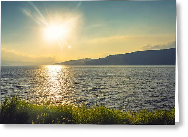Newfoundland Greeting Cards - Oceanview Greeting Card by Nick Prosper