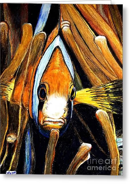 Aquarium Fish Drawings Greeting Cards - Ocellaris Clownfish Greeting Card by Daniel Janda