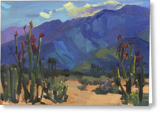 Afternoon Light Greeting Cards - Ocotillos at Smoke Tree Ranch Greeting Card by Diane McClary