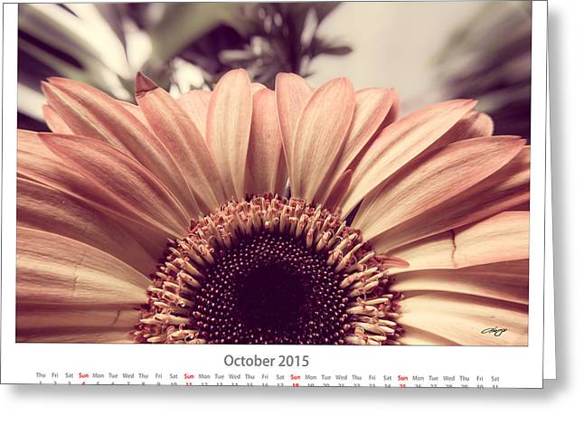 Monthly Calendars Greeting Cards - October 2015 Calendar Sheet Greeting Card by Alejandro Reyna