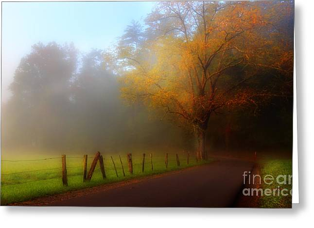 Roadway Greeting Cards - October And Fog Greeting Card by Michael Eingle