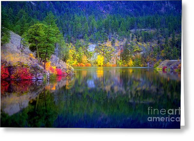 Foilage Greeting Cards - October at Yellow Lake Greeting Card by Tara Turner