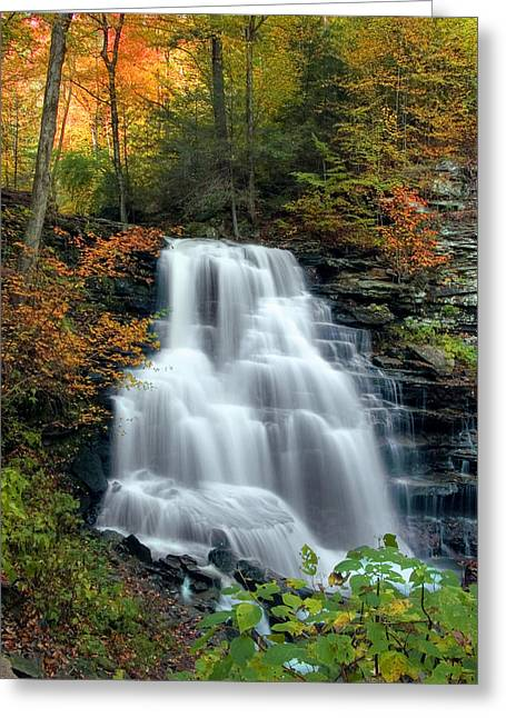 October Foliage Surrounding Erie Falls Greeting Card by Gene Walls