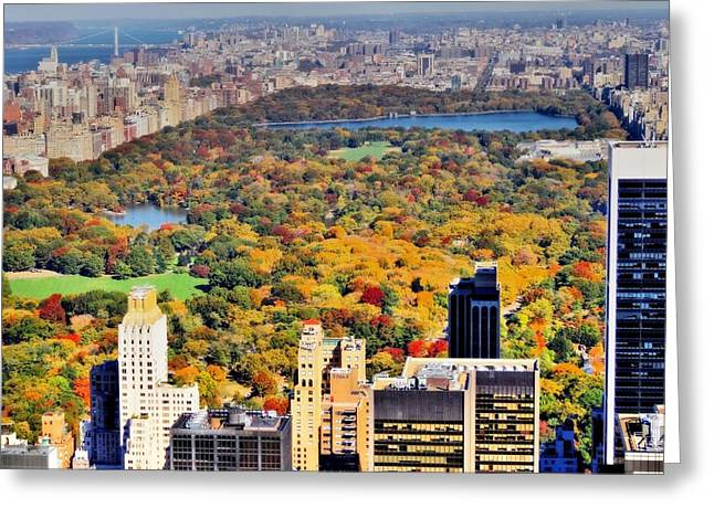 Midtown Greeting Cards - October Glow In Central Park Manhattan Skyline Greeting Card by Dan Sproul