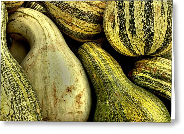Fall Greeting Cards - October Gourds Greeting Card by Michael Eingle