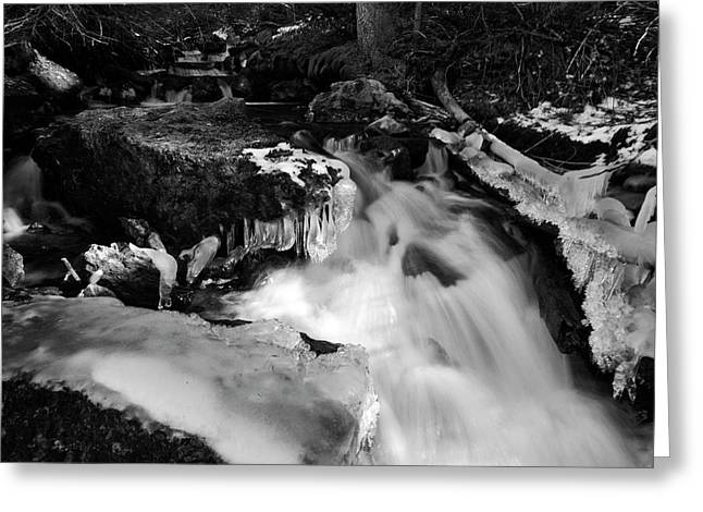Jeremy Greeting Cards - October Ice BW Greeting Card by Jeremy Rhoades