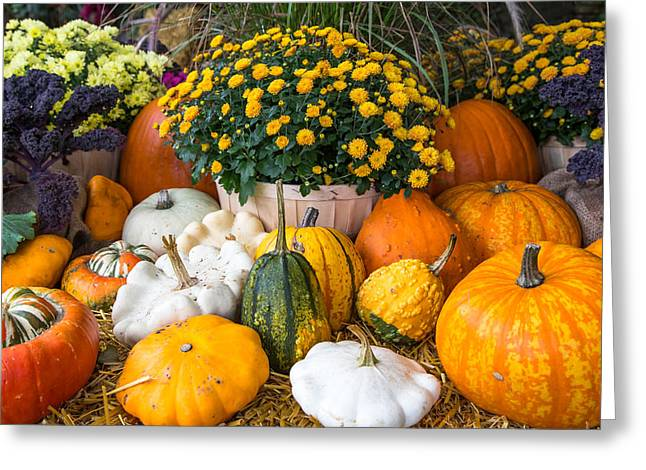 Victoria Johns Greeting Cards - October in the Gardens Greeting Card by John Daly