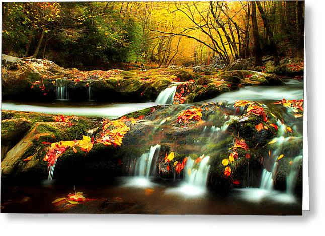 Fall Scenes Greeting Cards - October In The Smokies Greeting Card by Michael Eingle