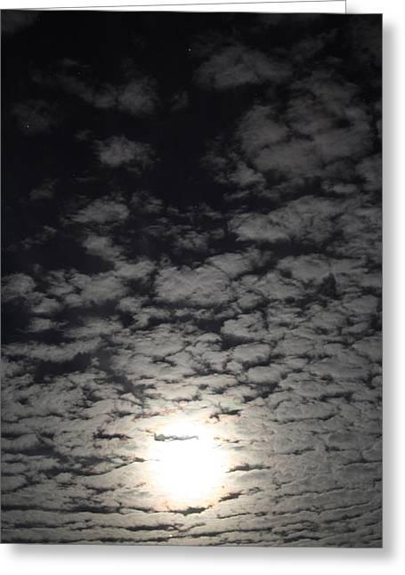 October Pyrography Greeting Cards - October Moon Greeting Card by Joel Loftus