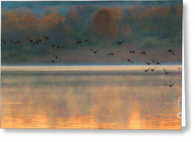 Chalco Hills Recreation Area Greeting Cards - October Morn Greeting Card by Elizabeth Winter