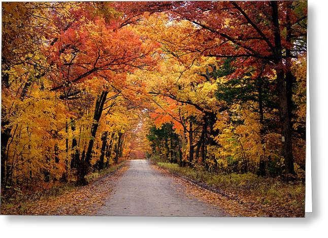Gravel Road Greeting Cards - October Road Greeting Card by Cricket Hackmann