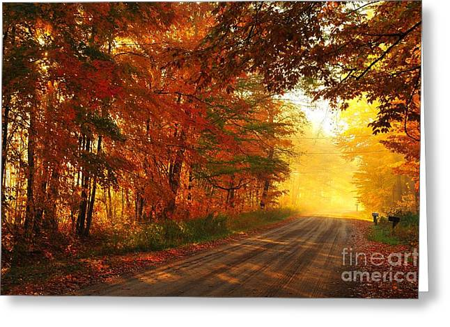 Autumn Trees Greeting Cards - October Road Greeting Card by Terri Gostola