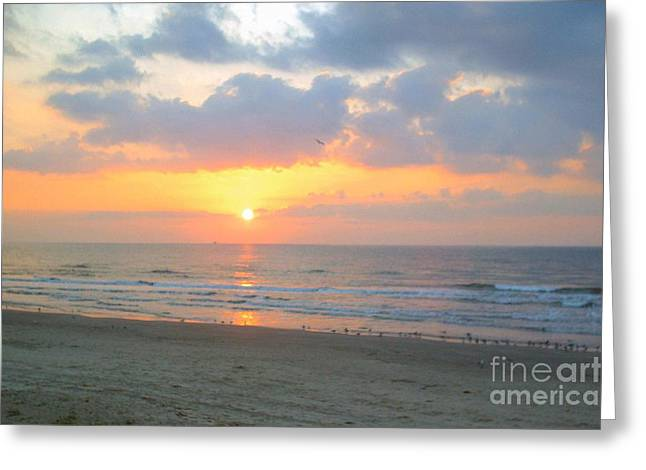 Galveston Greeting Cards - October sunrise Greeting Card by Audrey Van Tassell