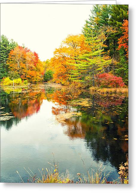 Colors Of Autumn Greeting Cards - Octobers Paintbrush Greeting Card by Karol  Livote
