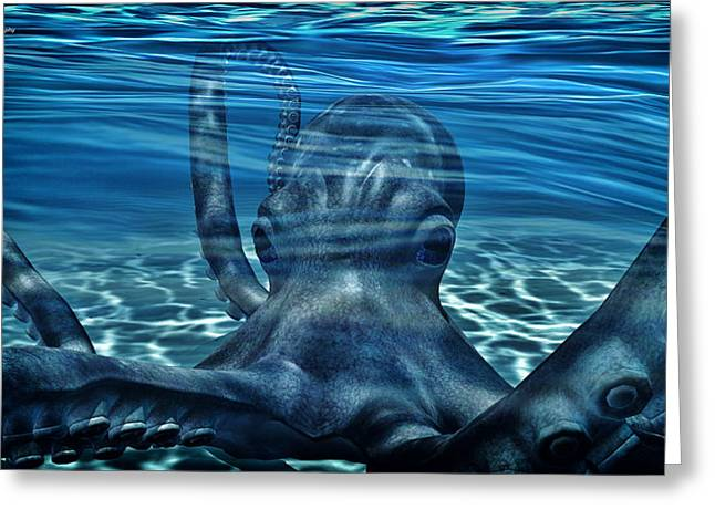 Anchor Underwater Greeting Cards - Octopus Close up  Greeting Card by Todd and candice Dailey