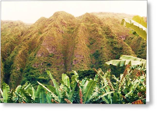 Hawii Greeting Cards - Odd Hill and Bushes Greeting Card by Joan Shortridge