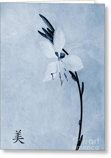 Beauty Greeting Cards - Oenothera lindheimeri Cyanotype Greeting Card by John Edwards