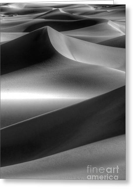 Mountains Of Sand Greeting Cards - Of Light And Shadow Greeting Card by Bob Christopher