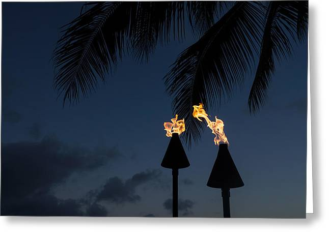Night Lamp Greeting Cards - Of Tiki Torches Palm Trees and Beach Parties Greeting Card by Georgia Mizuleva