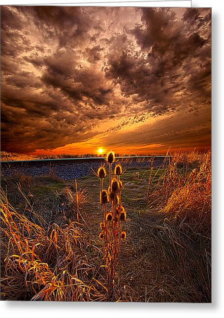Sunrise Greeting Cards - Of Wonders Lost Greeting Card by Phil Koch