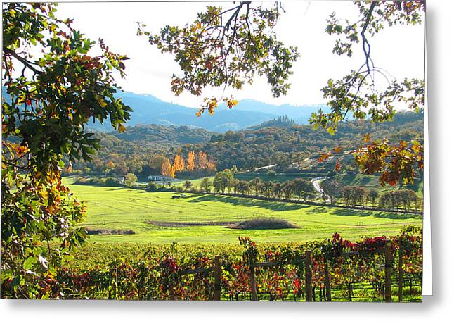 Scenic Drive Greeting Cards - View from Carpenter Hill Road Greeting Card by Brooks Garten Hauschild