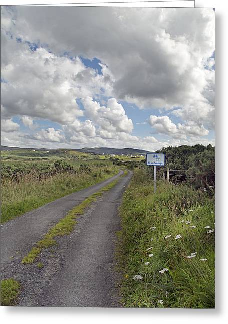Sli Greeting Cards - Off the Beaten Path -- Ireland Greeting Card by Betsy A  Cutler