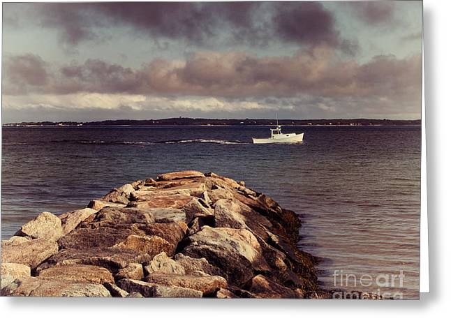 Mink Greeting Cards - Off The New England Coast Greeting Card by Mark Miller
