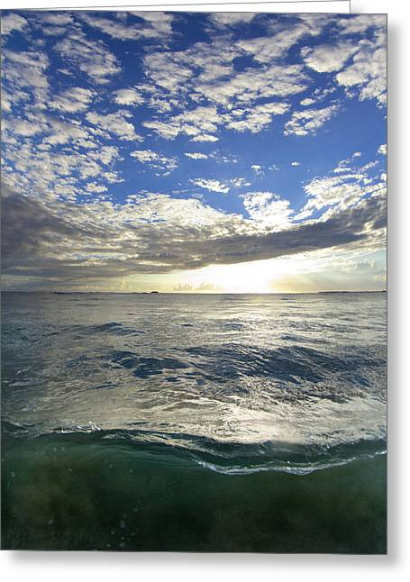 Surf Art Greeting Cards - Off The Page Greeting Card by Sean Davey