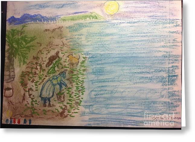 Ewa Greeting Cards - Ogo Harvest Ewa Beach Greeting Card by Willard Hashimoto