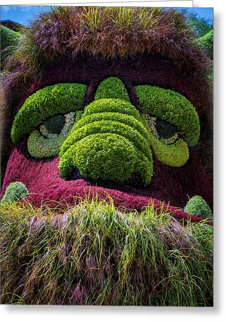 Eyebrow Greeting Cards - Ogre Greeting Card by Joan Carroll