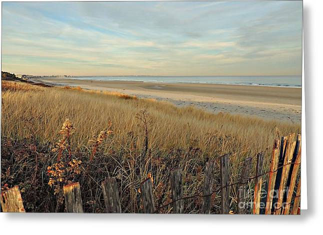 Marcia Lee Jones Greeting Cards - Ogunquit Beach 3 Greeting Card by Marcia Lee Jones