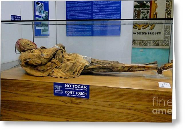 The Mummy Greeting Cards - Oh Mummy Mummy Greeting Card by Al Bourassa