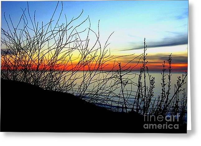 My Ocean Greeting Cards - Oh My Horizon Greeting Card by Louie  Wiggins