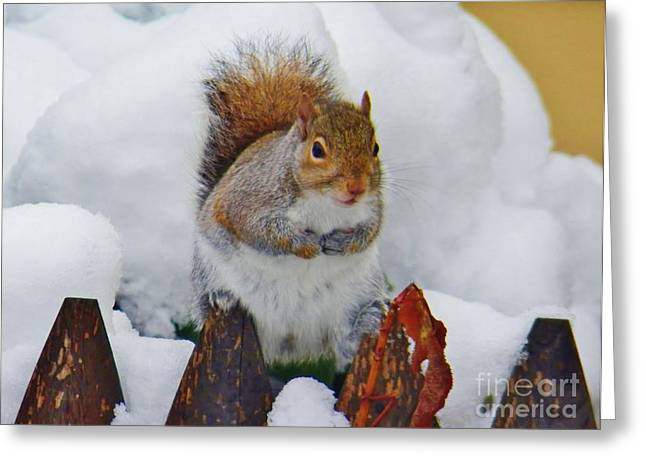 Judy Via-wolff Greeting Cards - Oh No   Early Snow Greeting Card by Judy Via-Wolff