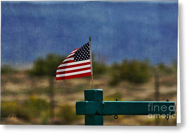 4th July Digital Art Greeting Cards - Oh Say Can You See Greeting Card by Janice Rae Pariza