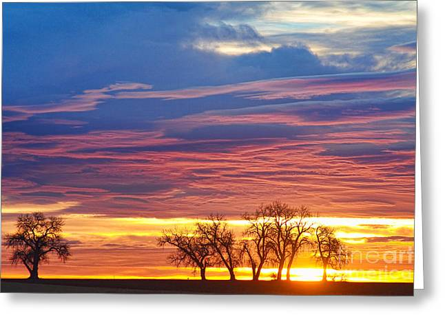 Oh What A Beautiful Morning Greeting Card by James BO  Insogna