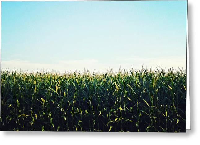 Cornfield Digital Art Greeting Cards - Ohio Greeting Card by Natasha Marco