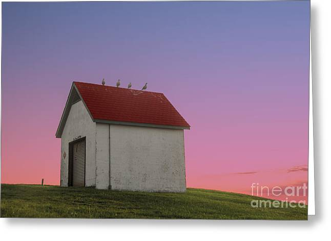 Historic England Greeting Cards - Oil House Greeting Card by Juli Scalzi