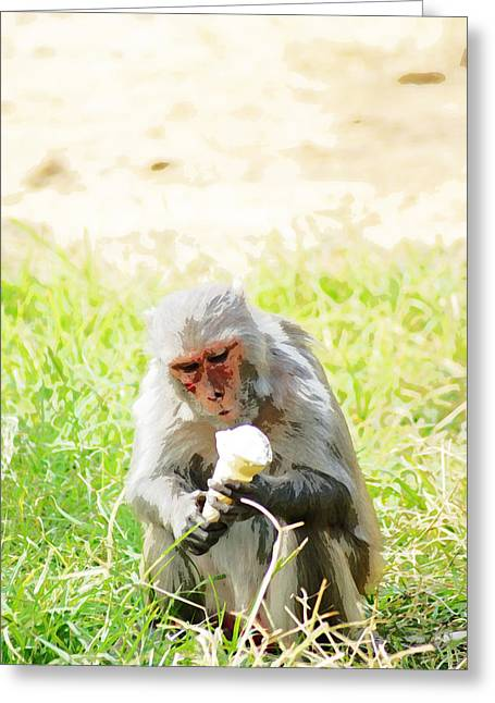 Recently Sold -  - Patch Greeting Cards - Oil Painting - A monkey eating an ice cream Greeting Card by Ashish Agarwal