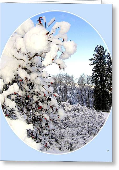 Okanagan Valley Greeting Cards - Okanagan Valley Snowscape Greeting Card by Will Borden