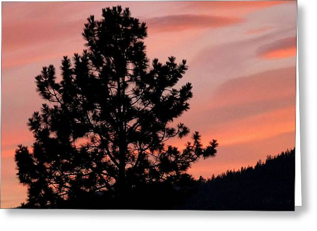 Okanagan Valley Greeting Cards - Okanagan Valley Splendor Greeting Card by Will Borden