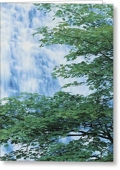 Descend Greeting Cards - Oku-nikko Tochigi Japan Greeting Card by Panoramic Images