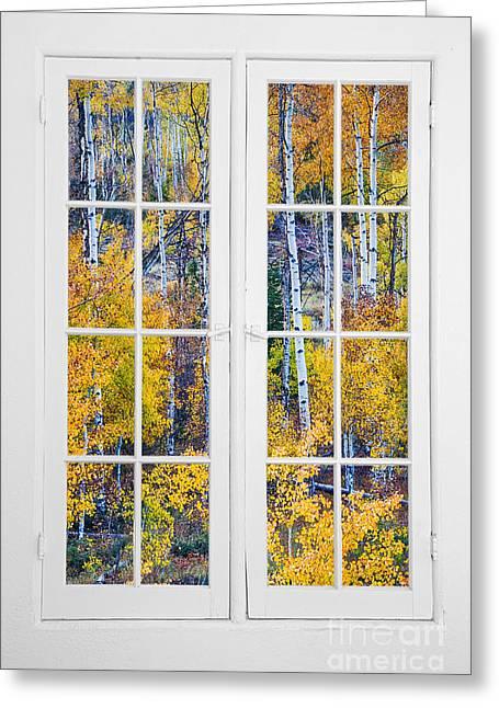 Office Space Greeting Cards - Old 16 Pane White Window Colorful Fall Aspen View  Greeting Card by James BO  Insogna