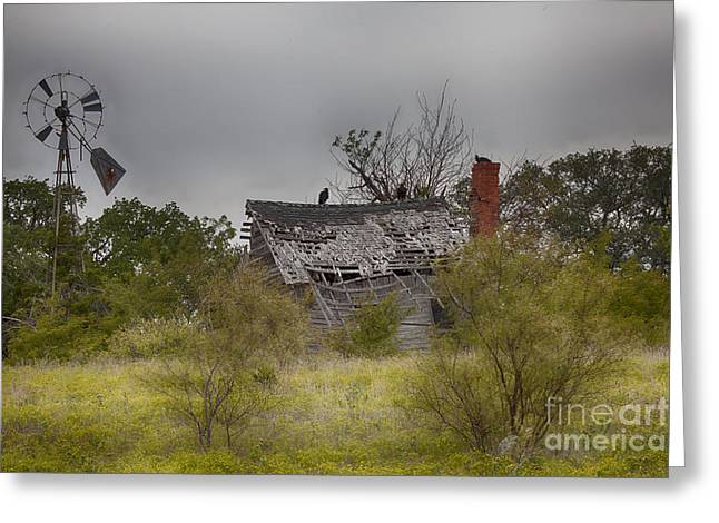 Old Cabins Greeting Cards - Old and Forgotten Greeting Card by Douglas Barnard