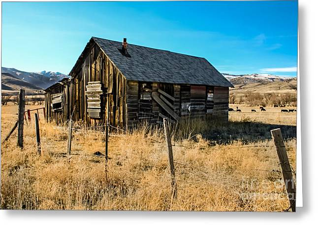 Haybales Photographs Greeting Cards - Old and Forgotten Greeting Card by Robert Bales