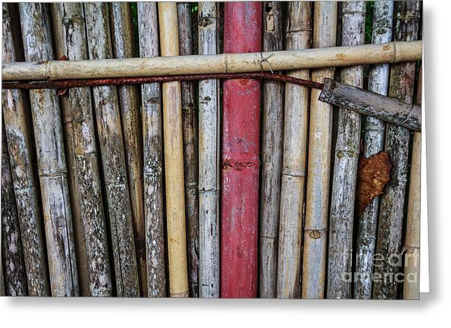 Recently Sold -  - Bamboo Fence Greeting Cards - Old Bamboo Fence Greeting Card by Niphon Chanthana